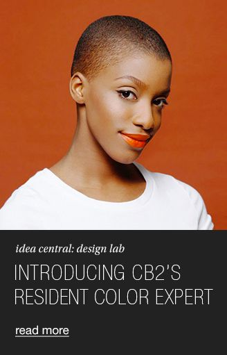introducing cb2's resident color expert