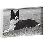acrylic white rim 4x6 picture frame.