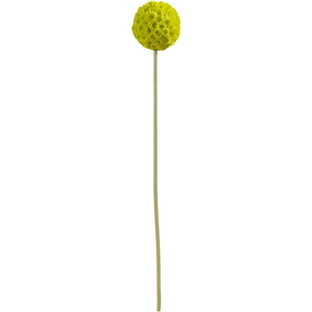 small green artificial allium flower stem
