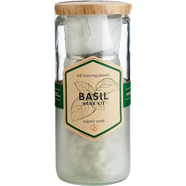 basil herb kit