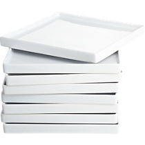 bento dinner plates set of eight