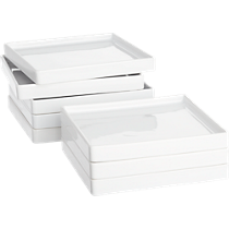bento salad plates set of eight