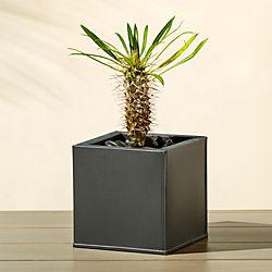 blox square galvanized charcoal planter