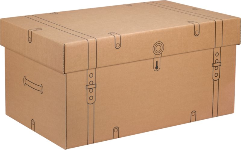 cardboard storage trunk