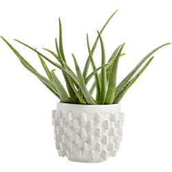 chunky white block planter