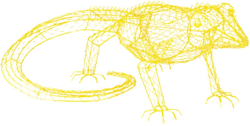 george the yellow iguana