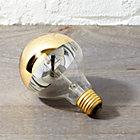 GoldTippedLightBulb60WSHF16
