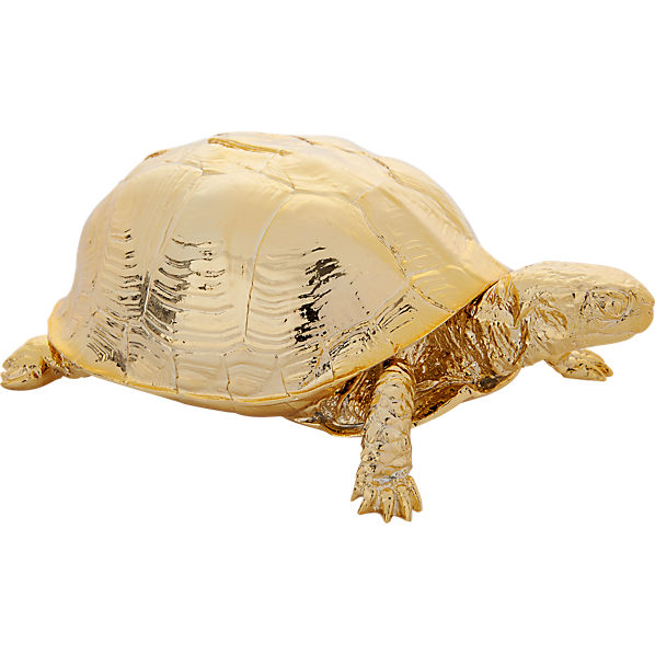 GoldTurtleF14