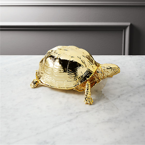 GoldTurtleSHF16