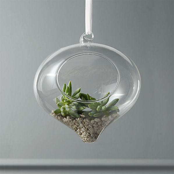 HangingGlassTerrariumROF16