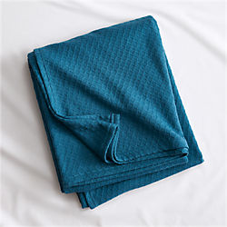 hive blue-green blanket