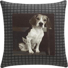hound 18 pillow