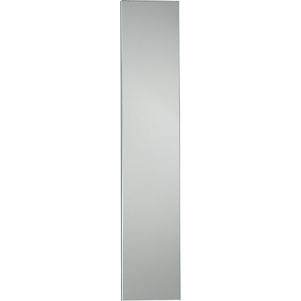 Infinity 10 5 x54 narrow wall mirror cb2 for Small long mirrors