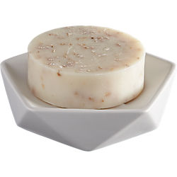 kastor soap dish