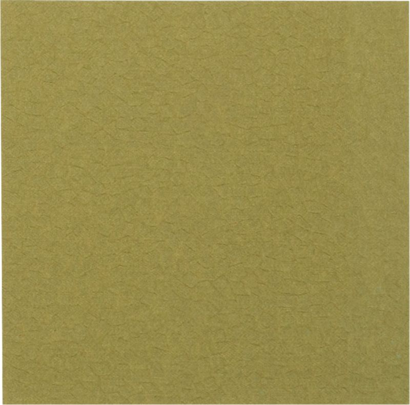 liora fossette green carpet square