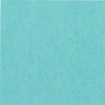 liora heather light aqua carpet square