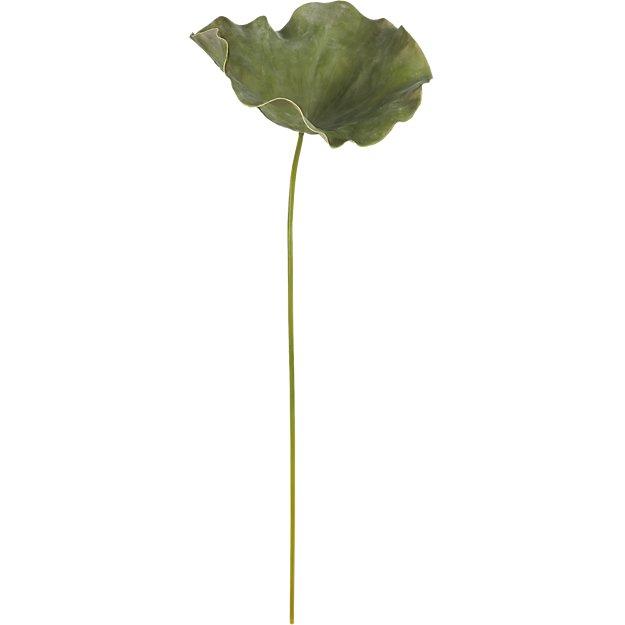 """lotus leaf 40"""""""