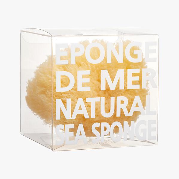 NaturalSpongeF16