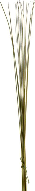 "<span class=""copyHeader"">palm springs eternal.</span> Natural palm leaves dried in the sun spike botanical arrangements year-round.<br /><br /><NEWTAG/><ul><li>Natural palm sticks</li><li>Organic dye</li></ul>"