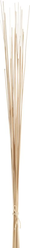 set of 25 natural palm sticks