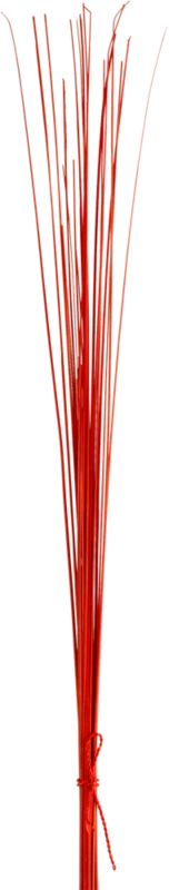 set of 25 orange palm sticks