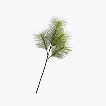 pine spray