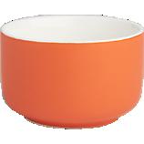 roundish salmon mini bowl