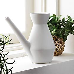 SAIC watering carafe