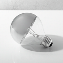 silver tipped 60W light bulb