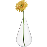 wall mounted teardrop vase