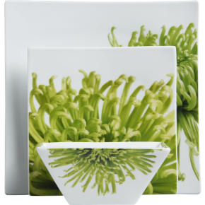 verde dinnerware shopping in CB2 dinnerware