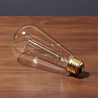 vintage filament light bulb. 60W