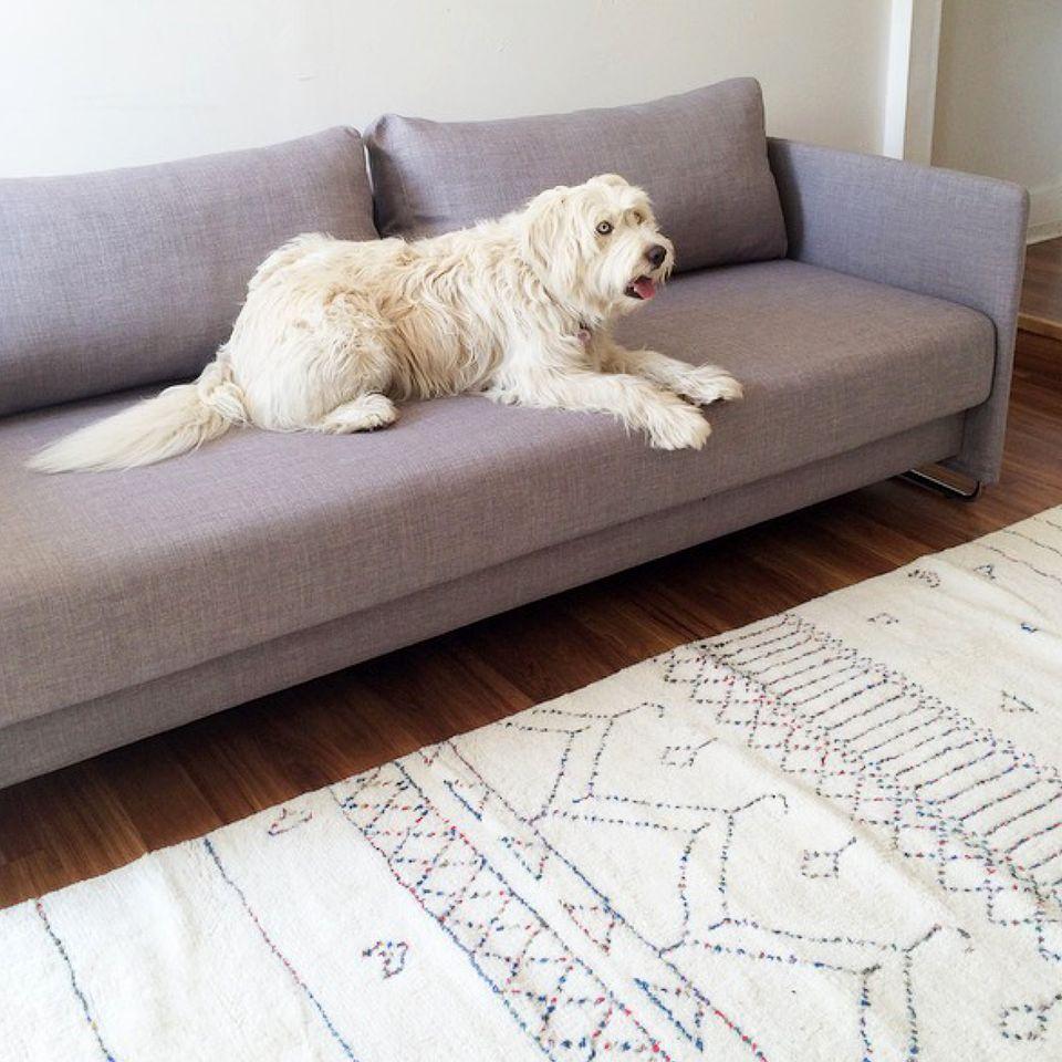 APT CB2 + SF Girl by Bay: Tandom Grey Sleeper Sofa