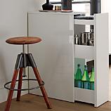 SAIC cache storage cabinet
