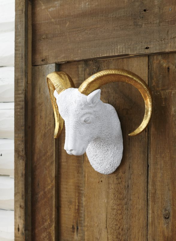 goldie the wall hanging ram