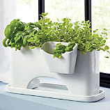 SAIC sprout planter