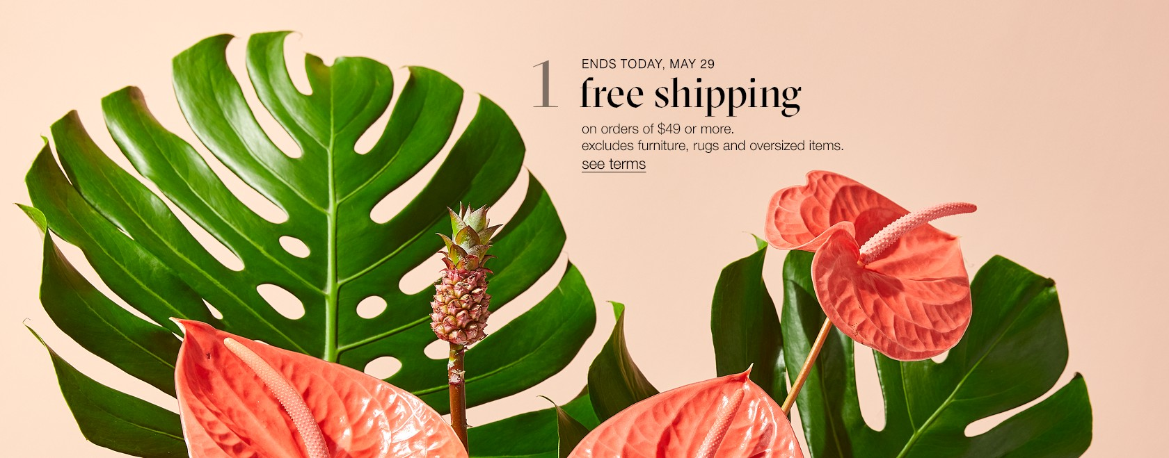 free shipping on select orders $49 or more