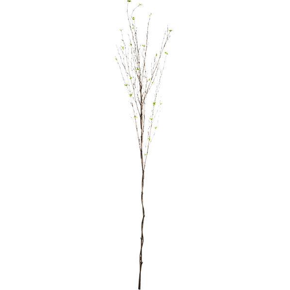 BambooSprayS15