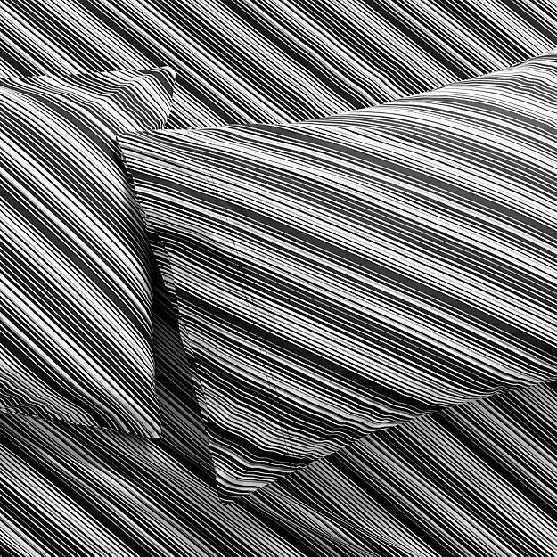 set of 2 bias black and white king pillowcases