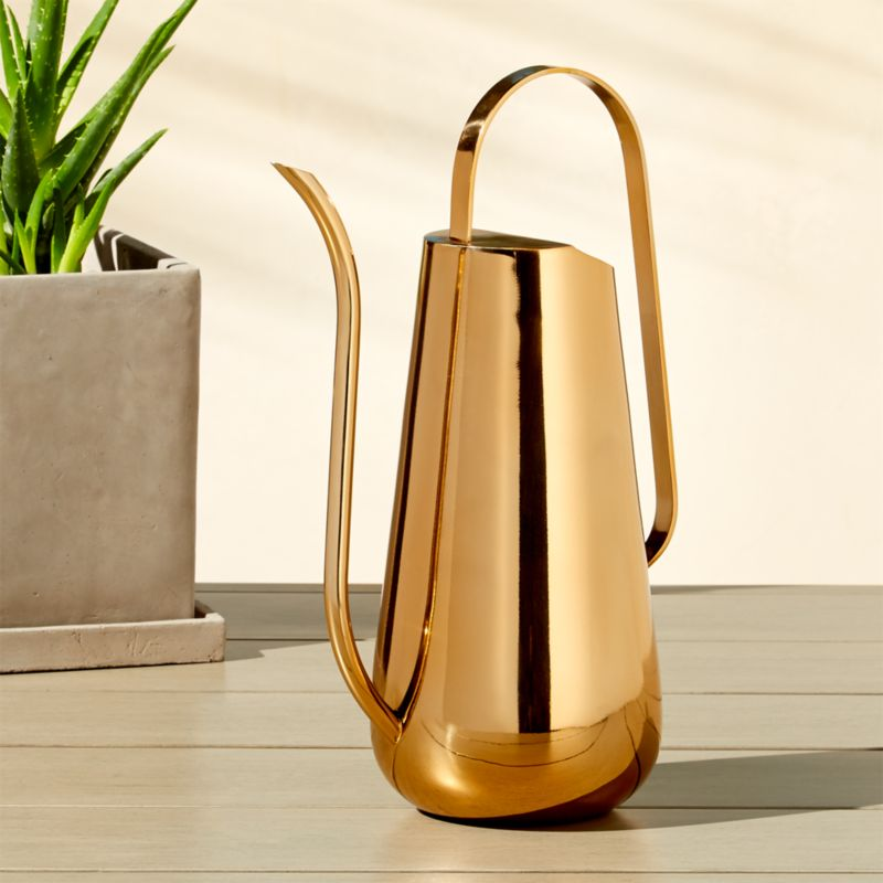 Brass watering can cb2 - Sprinkling cans ...