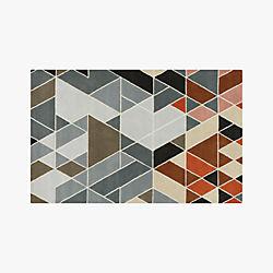 cleo muliticolor rug 5'x8'