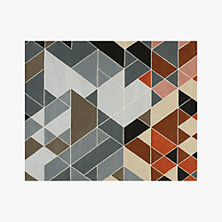 cleo muliticolor rug 8'x10'