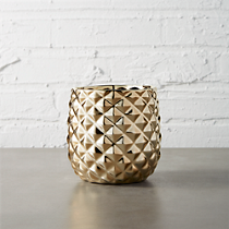 colada pineapple vase-planter