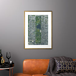 "central park with gold frame 25.5""x34.5"""
