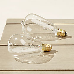 edison string light bulbs set of two