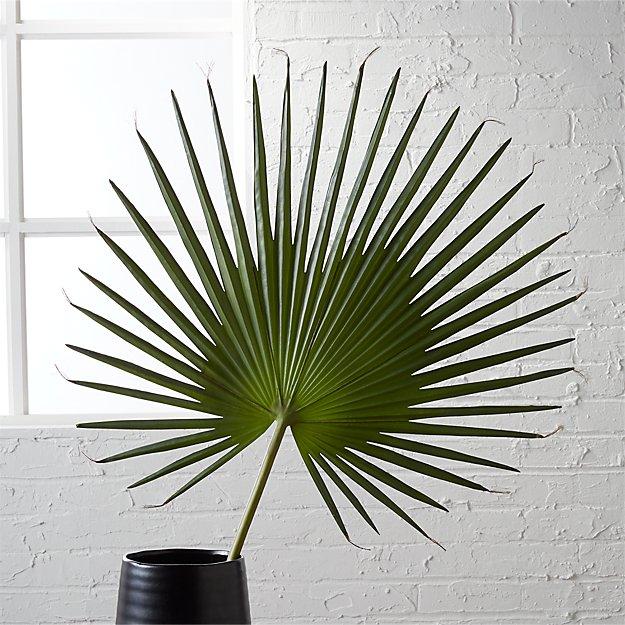Screen Printing Basics Palm Desert: Fan Palm In Botanicals + Reviews