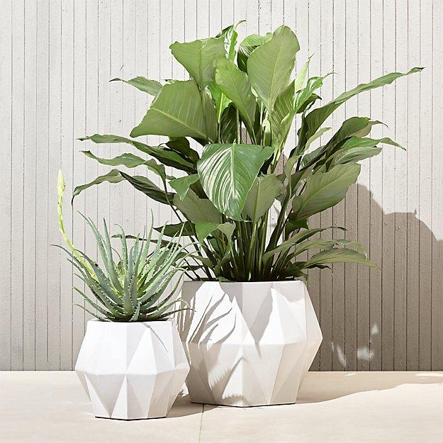 isla white planters