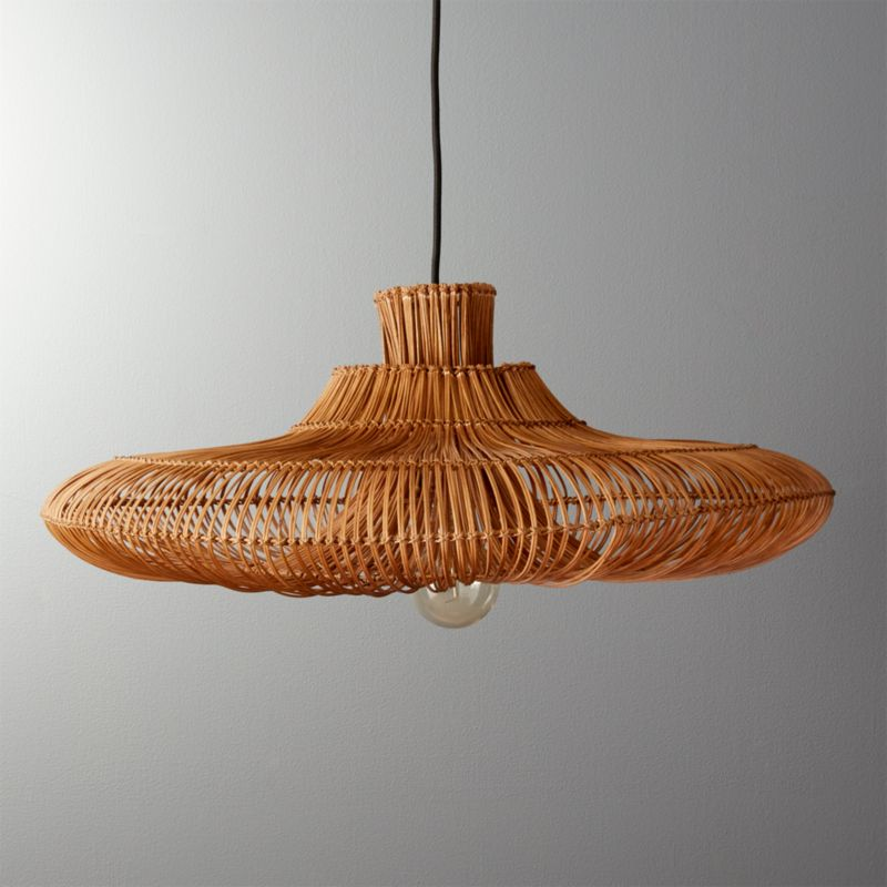 pl one pendant light
