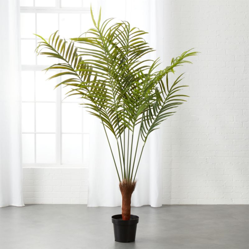 Potted Faux Palm Tree Reviews Cb2