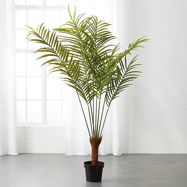Potted Faux Palm Tree | CB2